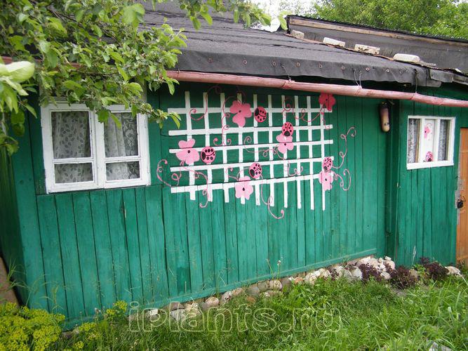 Украсить стену искусственными цветами 87