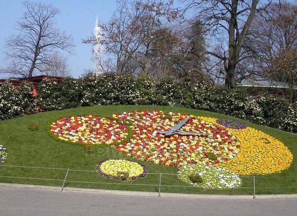 арабеска цветник