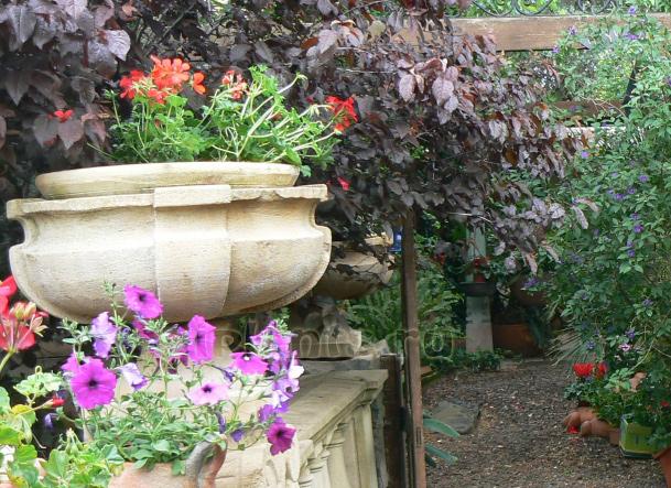 вазоны для цветов
