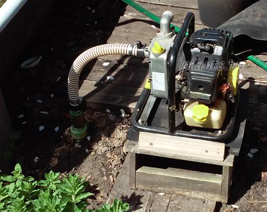 поверхностный насос для дачи с бензиновым двигателем