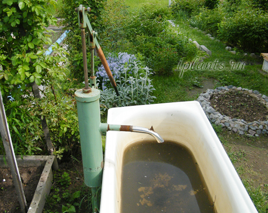 ручной насос - садовая колонка