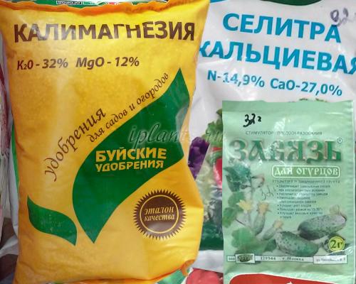 минеральные удобрения для огурцов