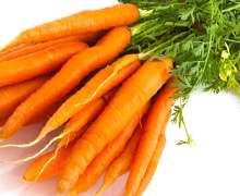 морковь под зиму
