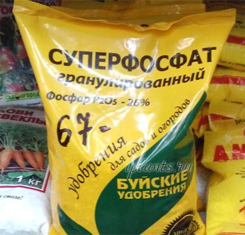 Суперфосфат Удобрение Инструкция По Применению Для Огурцов - фото 7