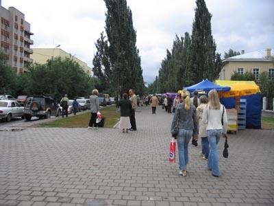 nevesti-tyulpani-vistavka-tsvetov-omsk